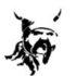 Orgue de barbarie et limonaire Odin à flûtes et anches, mécanique et pneumatique